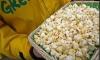 Kukuruz kokicar - slane kokice i slatke, masun okrugle kokice